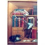 Libreria Trompe l'oeil